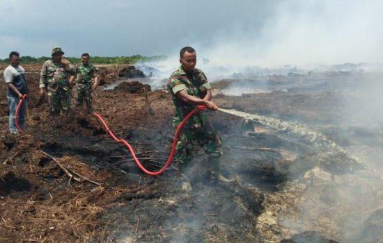 Babinsa Kuala Pesisir Padamkan Kebakaran Lahan Milik Warga