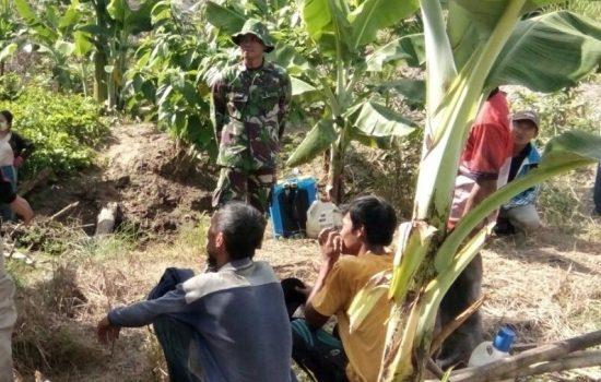 Babinsa Koramil 04/Sultan Daulat Himbau Warga Agar Tidak Membakar Lahan