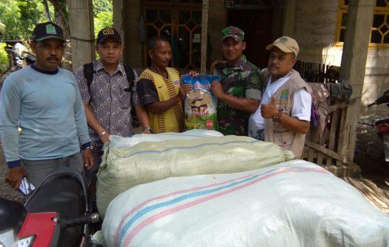 Babinsa Lamno Bersama Mantri Tani dan PPL Salurkan Bibit Padi Bantuan