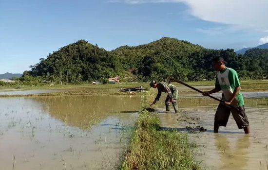 Serda Teguh Bantu Petani Perbaiki Pematang Sawah