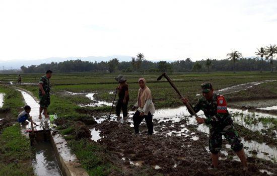Babinsa Kodim 0102/ Pidie Bantu Petani Mencangkul Menyiapkan Lahan untuk Semai Bibit Padi