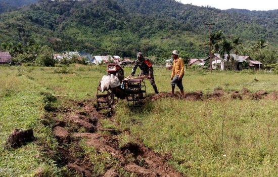 Babinsa Beutong Ateuh Banggalang Operasikan Traktor Tangan Bantu petani membajak sawah