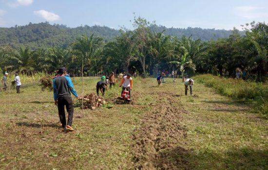 Sinergitas TNI/Polri dan Masyarakat Pintu Rimba Trumon Timur Siapkan Kampung Tangguh